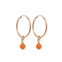 Sleek Sister Orange Earrings